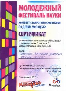 Молодежный фестиваль науки 2013 г.